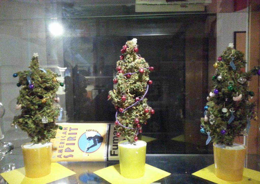 Weihnachten im CSC